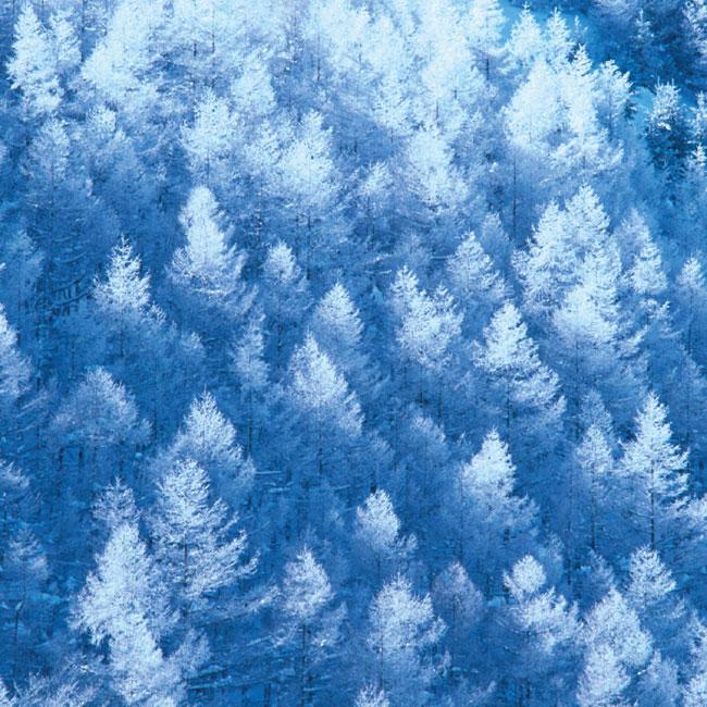 겨울전경사진